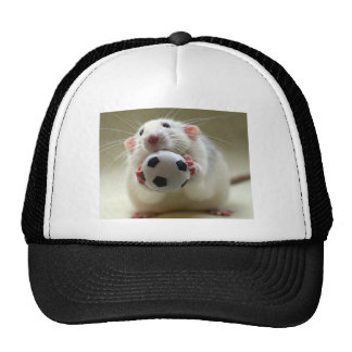 Cute rat playing soccer trucker hat