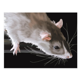 Cute Rat Postcard