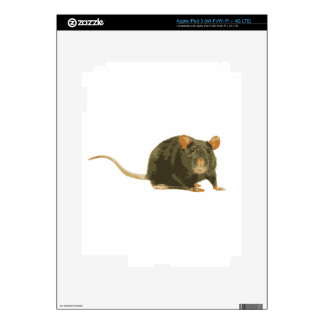 Cute Rat Skin For iPad 3