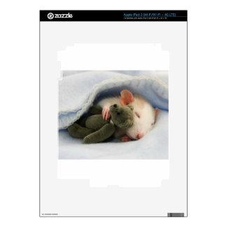 cute rat sleeping with teddy iPad 3 skins