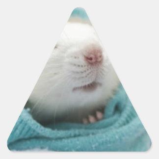 Cute Rat Triangle Sticker