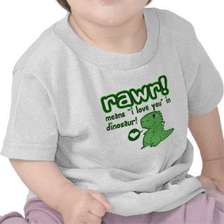 Cute! RAWR Means I Love You... Tshirt