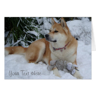 Cute red akita in snow with grey mouse toy greeting cards