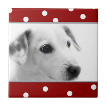 Cute red and white polka dots Photo template tile