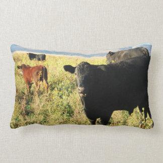 Cute Red Calf & Black Calves Cows Herd Western Throw Pillow
