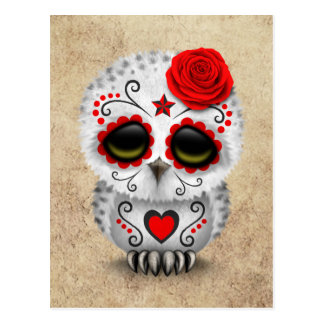 Cute Red Day of the Dead Sugar Skull Owl Rough Postcard