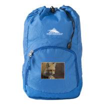 Cute Red Fox Backpack