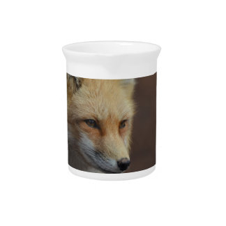 Cute Red Fox Beverage Pitchers