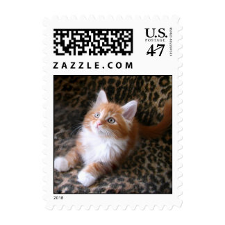 Cute red kitten postage stamp