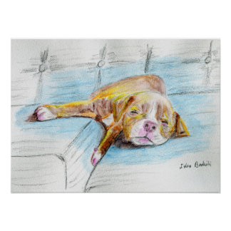 Cute Red Nose Pit Bull Puppy Sleeping on Sofa Poster