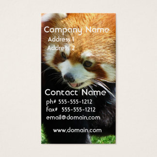 Cute Red Panda Bear Business Card