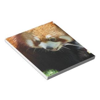 Cute Red Panda Bear Notepad