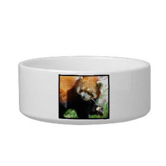 Cute Red Panda Bear Pet Bowl Cat Water Bowl