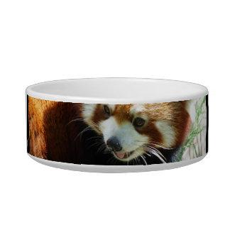 Cute Red Panda Bear Pet Bowl Cat Food Bowls