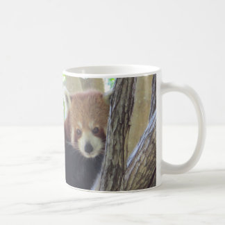 Cute Red Panda Classic White Coffee Mug