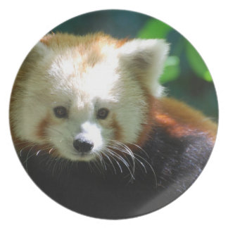 Cute Red Panda Party Plate