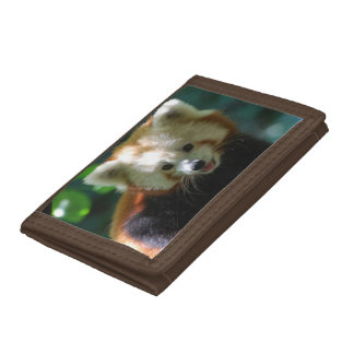 Cute Red Panda Trifold Wallet