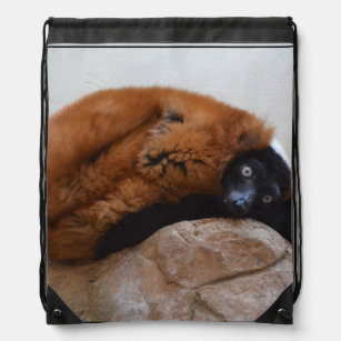 4b864c3b9343 Cute Red Ruffed Lemur Drawstring Backpack