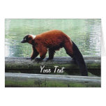 Cute Red-Ruffed Lemur Red Fur White Neck Card