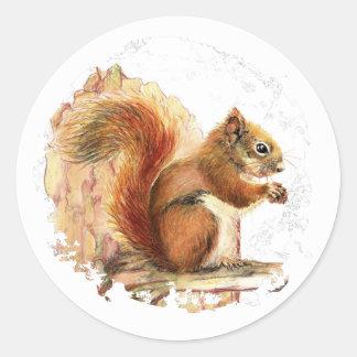 Cute Red Squirrel - Animal, Nature, Wildlife Classic Round Sticker