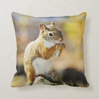 Cute red squirrel eating nut pillow