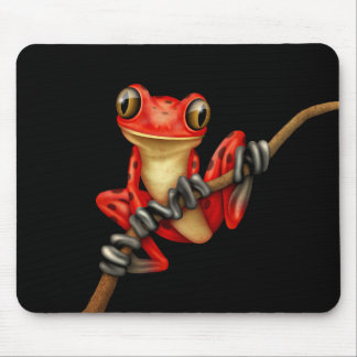 Cute Red Tree Frog on a Branch on Black Mouse Pad