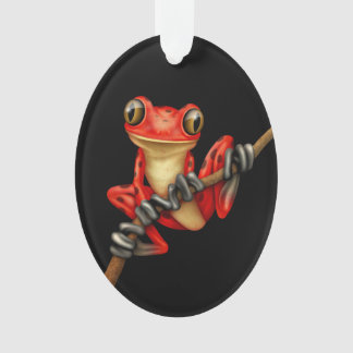 Cute Red Tree Frog on a Branch on Black Ornament