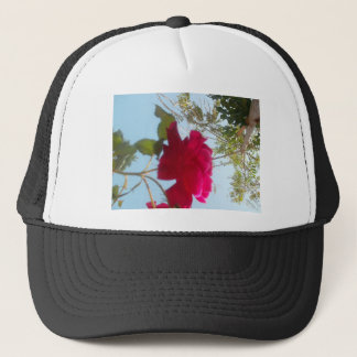 Cute Retro  Blue Red  Green SKY Trucker Hat