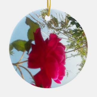Cute Retro Hakuna Matata Gift Blue Red  Green SKY  Christmas Ornament