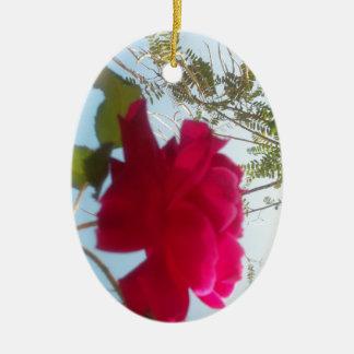 Cute Retro Hakuna Matata Gift Blue Red  Green SKY  Christmas Ornaments