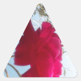 Cute Retro Hakuna Matata Gift Blue Red  Green SKY  Triangle Sticker