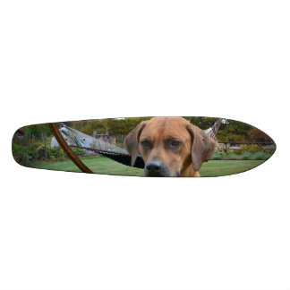 Cute Rhodesian Ridgeback Skateboard Decks