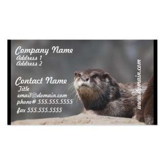 Cute River Otter Business Card Templates