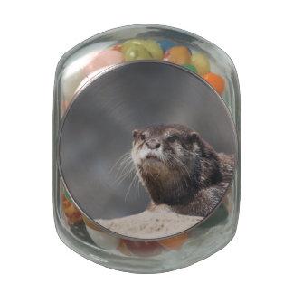 Cute River Otter Glass Candy Jar