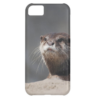 Cute River Otter iPhone 5C Cases