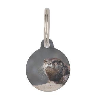 Cute River Otter Pet Tag