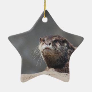 Cute River Otter Ornaments