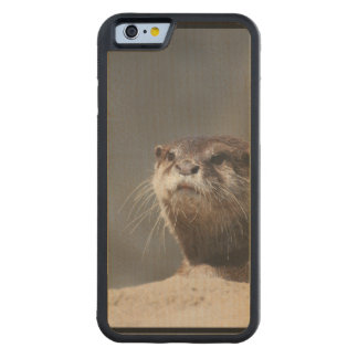 Cute River Otter Carved® Maple iPhone 6 Bumper Case
