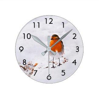 Cute Robin bird in snow