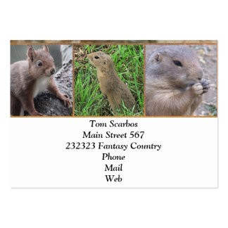 cute rodents business card templates