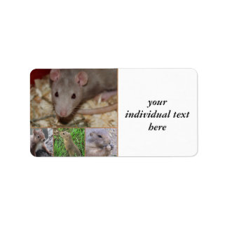 cute rodents address label