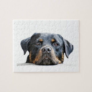 Cute Rottweiler Dog Breed Face Jigsaw Puzzle