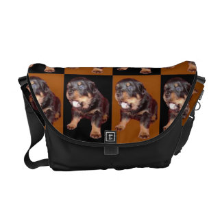 """Cute Rottweiler Pup On """"Black and Tan"""" Courier Bag"""