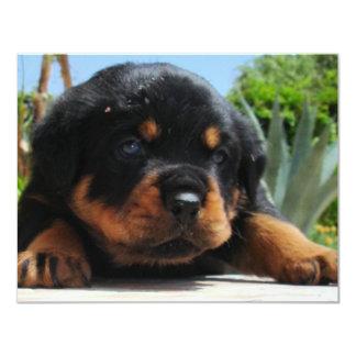 Cute Rottweiler Puppy With Blue Eyes Card