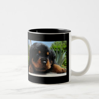 Cute Rottweiler Puppy With Blue Eyes Two-Tone Coffee Mug