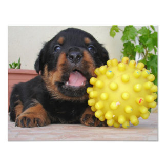 Cute Rottweiler Puppy With Yellow Toy Card