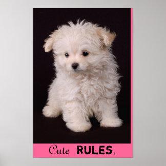 Cute Rules Maltese Poster