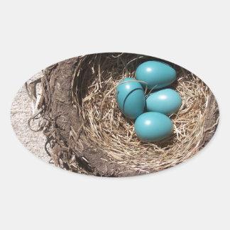 Cute Rustic Bird's Nest Blue Robin Eggs Oval Sticker