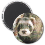 Cute Sable Ferret 2 Inch Round Magnet