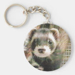 Cute Sable Ferret Key Chains